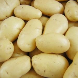 <center><b>Житель Австралии год питается одним картофелем</center></b>
