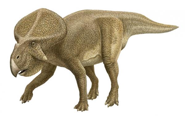 <center><b>Что делало динозавров сексуальными? </center></b>