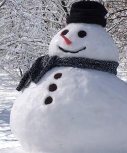 <center><b>Формула идеального снеговика</center></b>
