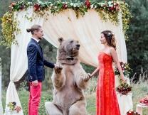 Пару из Москвы поженил медведь