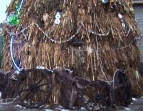 Кукурузная ёлка из Молдавии (видео)