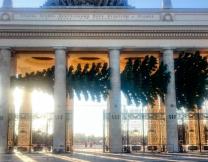 Лежачая ёлка в Парке Горького