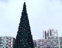 В Петербурге нарадяли к Пасхе новогоднюю ель