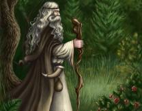 Возвращение питерского волхва (видео)