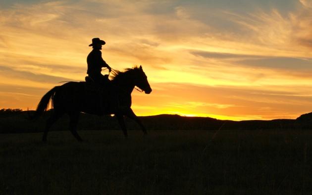 Техасский ковбой заехал в кафе на лошади