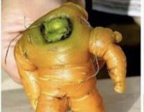 Морковка-астронавт