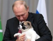 Новый друг Владимира Путина