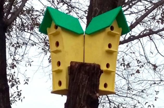 В Астрахани открыли желтый дом для скворцов