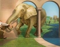 <center><b>Музей слонов откроется в Москве</center></b>