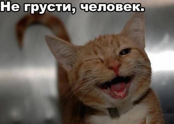 не грусти мой: