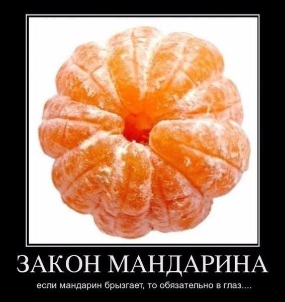 http://www.veseloeradio.ru/vardata/modules/lenta/images/320000/303723_1_1448654936.jpg