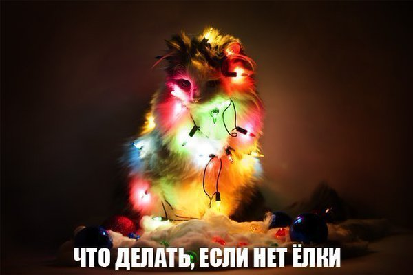 http://www.veseloeradio.ru/vardata/modules/lenta/images/320000/305964_1_1450472125.jpg