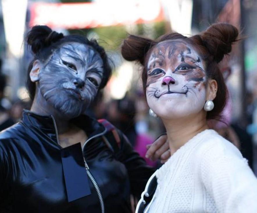 Фестиваль людей-котов в Японии (видео)
