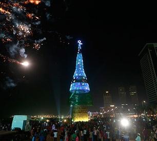 На Шри-Ланке установили самую большую елку